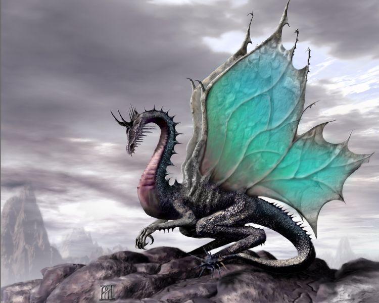 dragon07.jpg